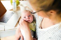 Madre irreconocible que celebra al hijo del bebé, leche en la botella, ordenador portátil Fotos de archivo