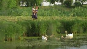 Madre joven con su cisne de alimentación de la hija del bebé y pequeños anadones en una charca verde del parque que lleva el vest metrajes