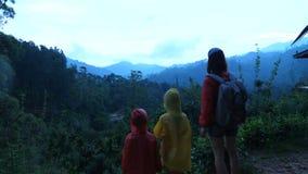 Madre joven feliz que camina con dos pequeños niños, paisaje tropical exótico de observación de las montañas del bosque en un día almacen de video