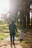 Madre joven que camina con su niño en el bosque en un día soleado en otoño imagenes de archivo
