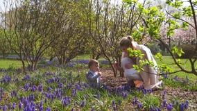 Madre joven que camina con un hijo del beb? en un campo del muscari en la primavera - d?a soleado - jacinto de uva almacen de metraje de vídeo