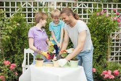 Madre joven que cultiva un huerto en frente o patio trasero con sus dos pequeños niños lindos fotografía de archivo