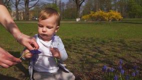 Madre joven que juega y que habla con un hijo del beb? en un campo del muscari en la primavera - d?a soleado - jacinto de uva - R almacen de metraje de vídeo