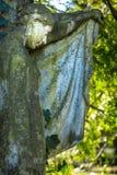 Madre Mary Christianity Religion in natura fotografia stock
