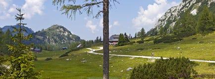 Madre natura - paesaggio del Tauplitz - il Alm dentro Fotografia Stock