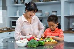 Madre sonriente que mira a su hijo que corta verduras Foto de archivo libre de regalías