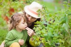 Madre y niño que comen la grosella negra Imagen de archivo libre de regalías