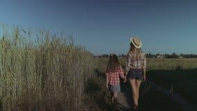 Madre y niño que disfrutan de la naturaleza en campo almacen de video