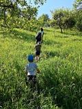 Madre y niños que caminan en una colina Fotos de archivo libres de regalías