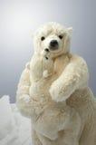 Madre y oso polar joven imagen de archivo
