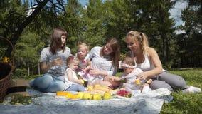 Madres jovenes con los niños que se sientan en un parque en una comida campestre almacen de metraje de vídeo