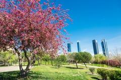 Madrid en primavera Imágenes de archivo libres de regalías