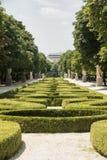 Madrid Spain: Buen Retiro park Stock Image