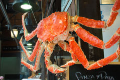 MADRID, SPAIN - FEBRUARY 12, 2017: A big crab hanging at San Miguel Market at Madrid. Spain Stock Images