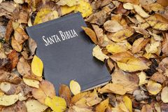 Holy Bible. Bible closed on top of fallen autumn leaves royalty free stock image