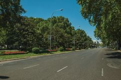 Trees on large avenue with flowered garden in Madrid. Madrid, Spain - July 25, 2018. Lined leafy trees on large quiet avenue with flowered garden, in a sunny day stock photography