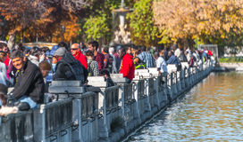 Madrid, Spain - November 9th, 2013:    Tourism in Spain.  A Fountain is well attended in Retiro Park.  Man takes a photo. Royalty Free Stock Photo