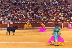 MADRID, SPAIN - SEPTEMBER 18: Matador and bull in bullfight on S Stock Photo
