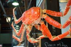 MADRID, SPANIEN - 12. FEBRUAR 2017: Eine große Krabbe, die bei San Miguel Market in Madrid hängt Stockbilder