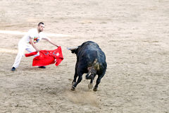MADRID SUBURB OF SAN SEBASTIAN DE LOS REYES - SEPTEMBER 29: Men Stock Photography