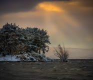 Madrugada con la primera nieve Fotografía de archivo libre de regalías