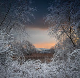 Madrugada con la primera nieve Fotos de archivo libres de regalías