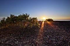 Madrugada de la playa de Scarbourough en la salida del sol fotos de archivo