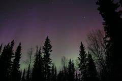 Madrugada en Alaska Imágenes de archivo libres de regalías