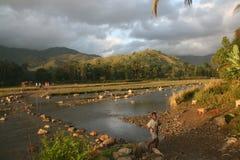 Madrugada en el campo de Haití Imagen de archivo libre de regalías