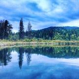 Madrugada en el lago fotografía de archivo libre de regalías