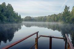Madrugada en el lago del bosque Imagenes de archivo