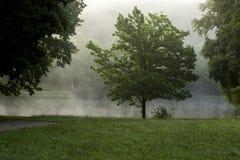 Madrugada en el parque Foto de archivo libre de regalías