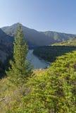Madrugada en el río de la montaña Imagen de archivo libre de regalías