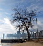Madrugada en la orilla del lago Foto de archivo libre de regalías