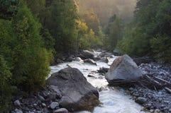 Madrugada en una garganta de la montaña con un río y un bosque foto de archivo