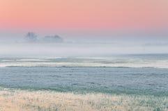 Madrugada escarchada sobre un prado brumoso y pantanoso con agua congelada imagen de archivo