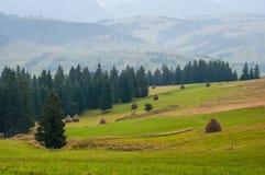 Madrugada hermosa del paisaje de la montaña en día de verano Foto de archivo libre de regalías