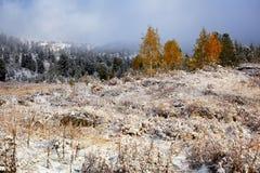 Madrugada y primera nieve del otoño en montañas Fotos de archivo