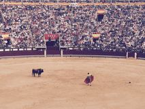 Madryt Hiszpania Las Vendas byka walka Obraz Royalty Free