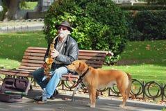 Madryt, Hiszpania -- Nov 3, 2017: Uliczny muzyk z psem Zdjęcie Stock