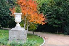 Madryt park Zdjęcia Royalty Free