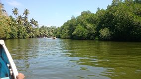 Madu ganga & x28; madu river& x29;-从小船的看法 免版税库存图片
