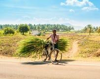 MADURAI, ИНДИЯ - 17-ОЕ ФЕВРАЛЯ: Неопознанный человек на сельском roa Стоковое Изображение RF