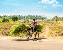 MADURAI INDIA, LUTY, - 17: Niezidentyfikowany mężczyzna na wiejskim Roa Obraz Royalty Free