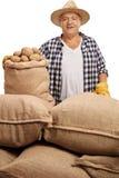 Madure al trabajador agrícola que presenta con los sacos con las patatas Imagen de archivo