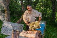 Madure el marco que se sostiene campesino ucraniano con las abejas mientras que trabaja en propia yarda de la abeja Imagenes de archivo