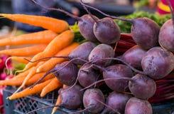 Madure las zanahorias jovenes y las remolachas rojas en venta Fotos de archivo libres de regalías