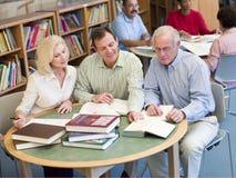 Madure a los estudiantes que estudian junto en biblioteca Foto de archivo libre de regalías