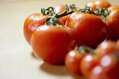 Maduro de tomates en el vector de cocina Fotos de archivo