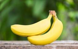 Maduro de verano de la fruta del plátano en jardín de madera y de la naturaleza foto de archivo
